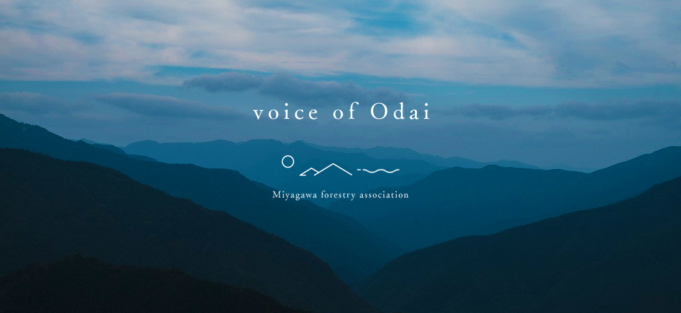voice of Odai